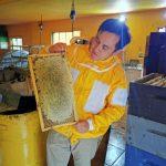 Propuesta ecológica: Candidato a concejal por Santa Bárbara busca reducir la huella de carbono de la comuna