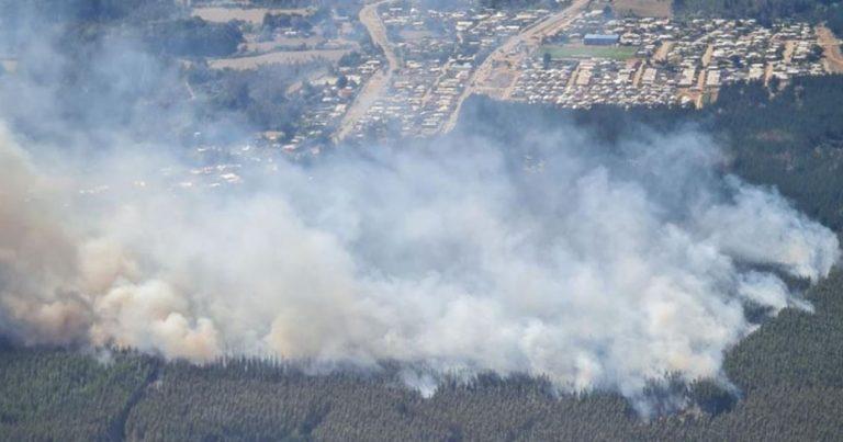Alerta Roja por incendio forestal en Lebu: se encuentra cercano a lugares habitados