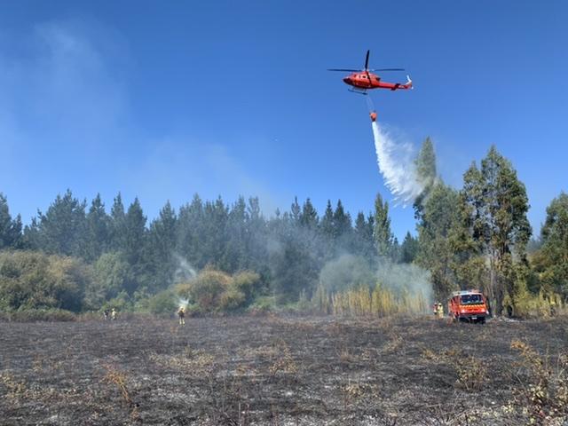 Los Ángeles: Incendio forestal afecta al sector de Los Tilos