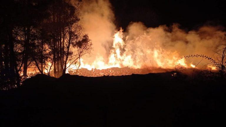 Los Ángeles: Incendio de proporciones afecta a instalaciones forestales
