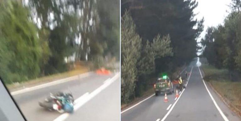 La Araucanía: motorista falleció tras chocar con un árbol caído en la ruta