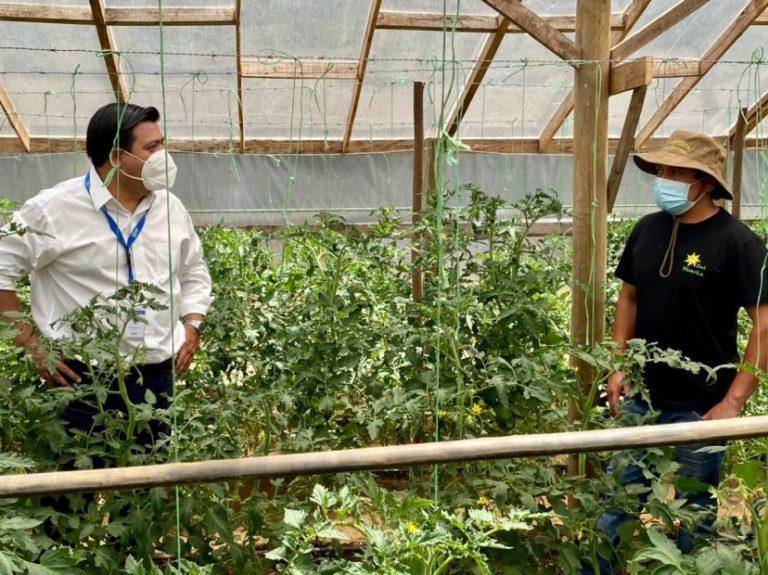 Mulchén: Comité «Sabor Campesino» lanza web con delivery para los vecinos