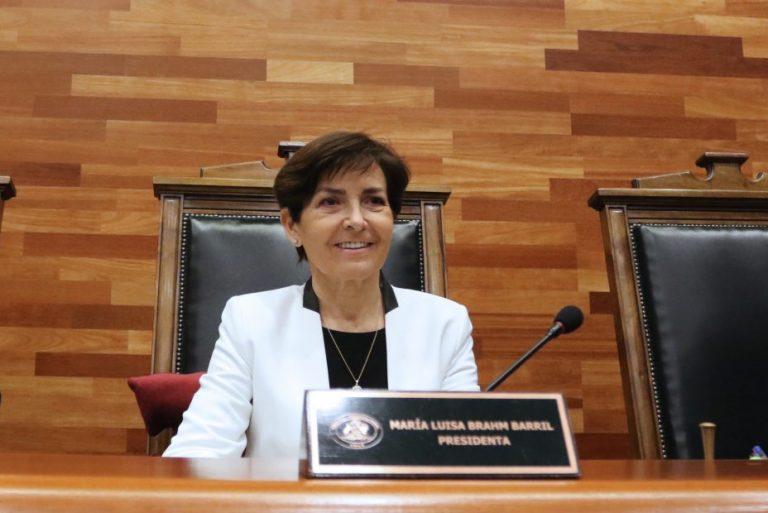 Tribunal Constitucional: buscan que María Luisa Brahm se inhabilite por 3er retiro