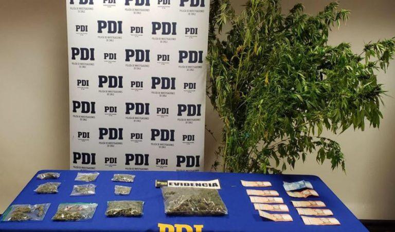 Negrete: PDI detiene a una madre y su hijo por tráfico de marihuana