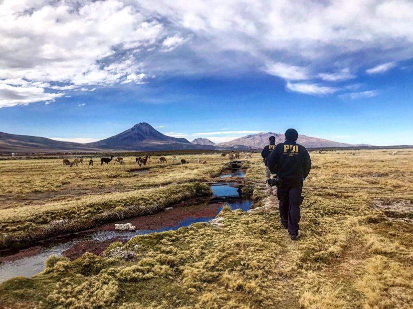 PDI Tarapacá Iquique investiga la muerte de una extranjera en la frontera con Bolivia