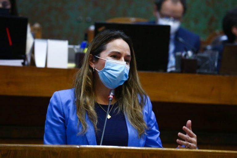 """Diputada Joanna Pérez: """"El proyecto de apoyo a las pymes es insuficiente"""""""