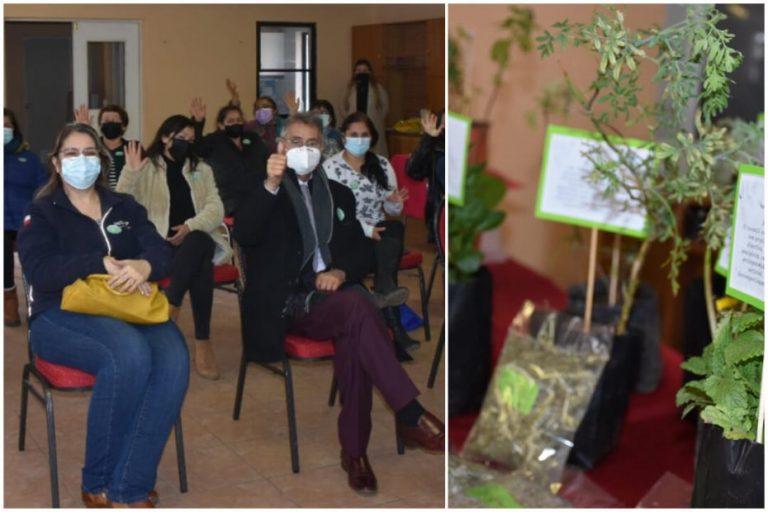 Mujeres de Yumbel son apoyadas para el desarrollo en el rubro de plantas medicinales