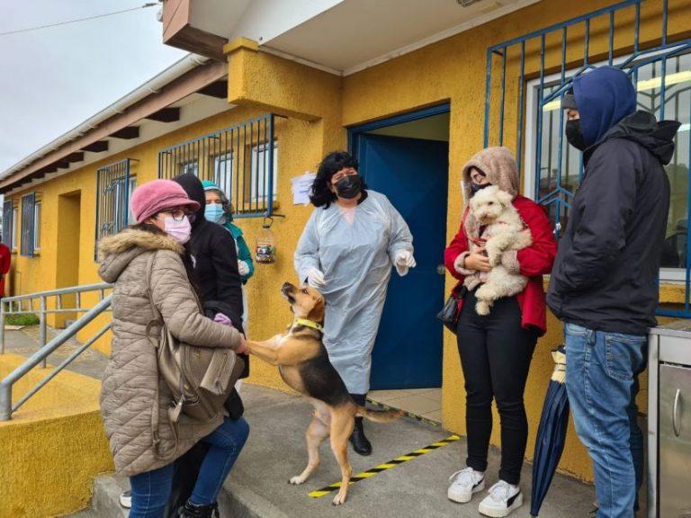 Invitan a participar de encuesta sobre la Tenencia Responsable de mascotas
