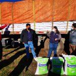 Entregan de alimentación animal para 2.086 agricultores de Alto Biobío