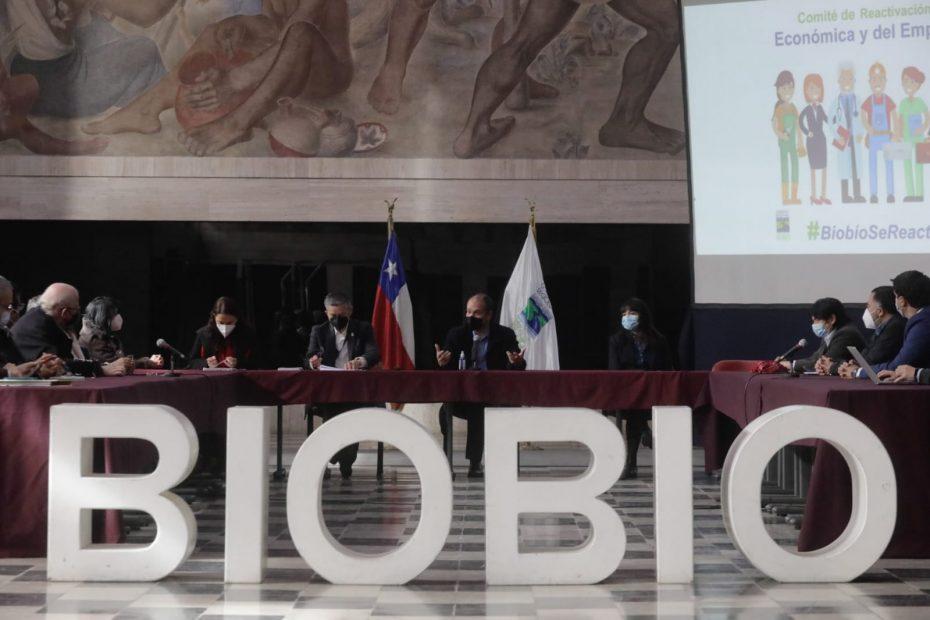 comité de reactivación económica en el Biobío