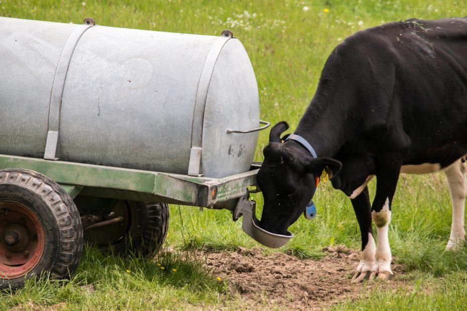 decretan emergencia agrícola