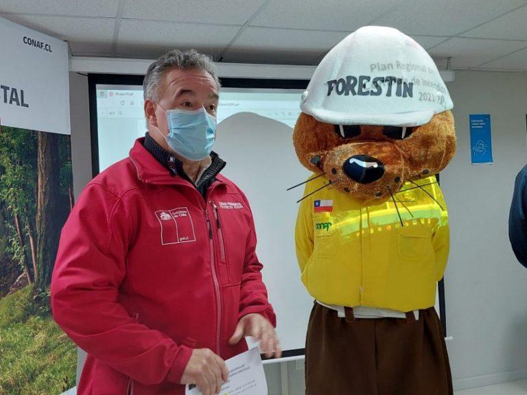 Gobierno presenta plan de prevención de incendios forestales en el Biobío