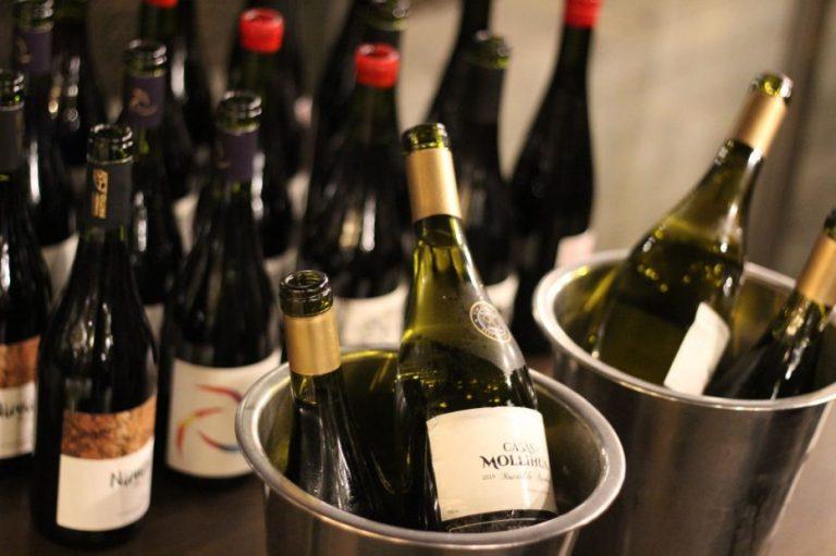 Valle del Itata celebró el día del vino chileno con espectacular cata en Vitacura