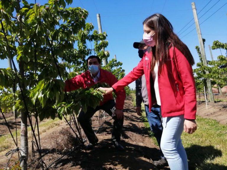 """Plataforma """"Súmate al Agro"""" busca impulsar puestos de trabajo en Biobío"""