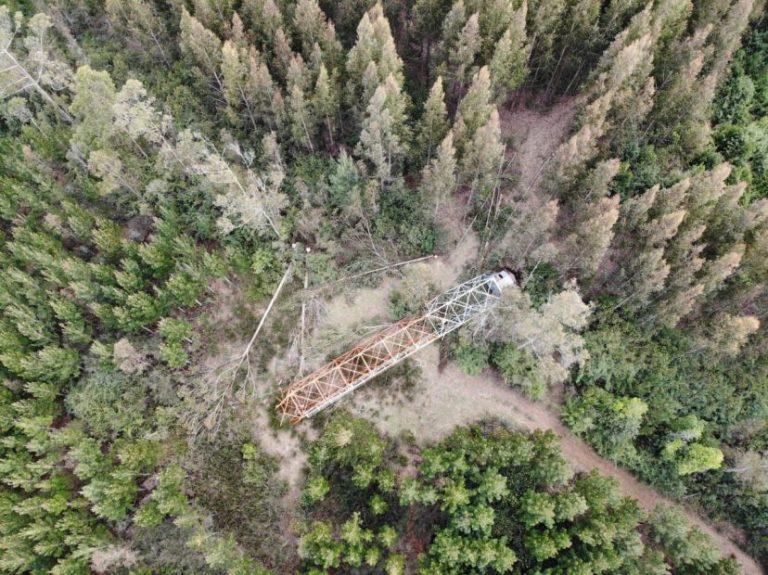 Derriban torre de vigilancia para prevención de incendios en Contulmo